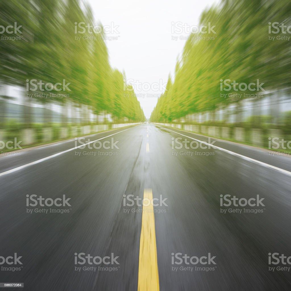 Sunset woods road stock photo