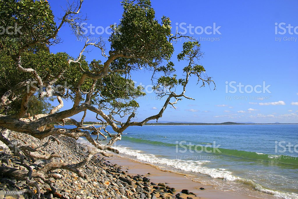 Sunshine Coast, Australia royalty-free stock photo