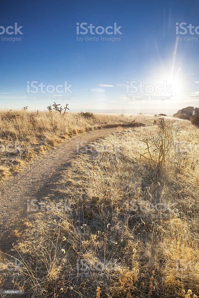 sunshine landscape path stock photo