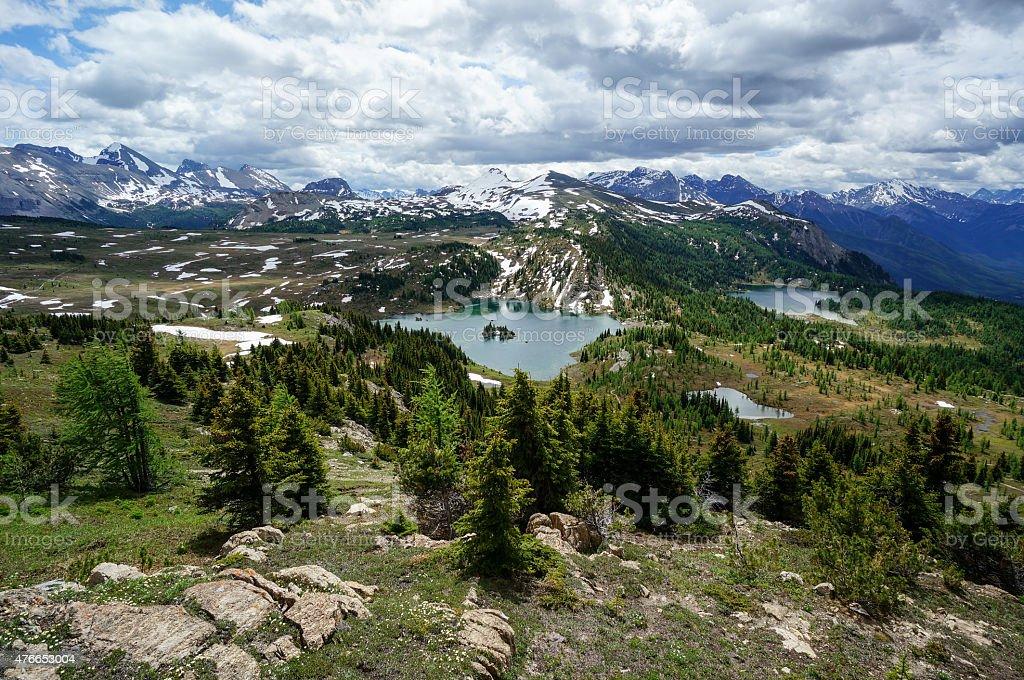 Sunshine Meadows in Banff National Park stock photo