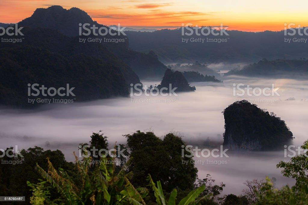 Sonnenschein am Morgen Nebel Lizenzfreies stock-foto