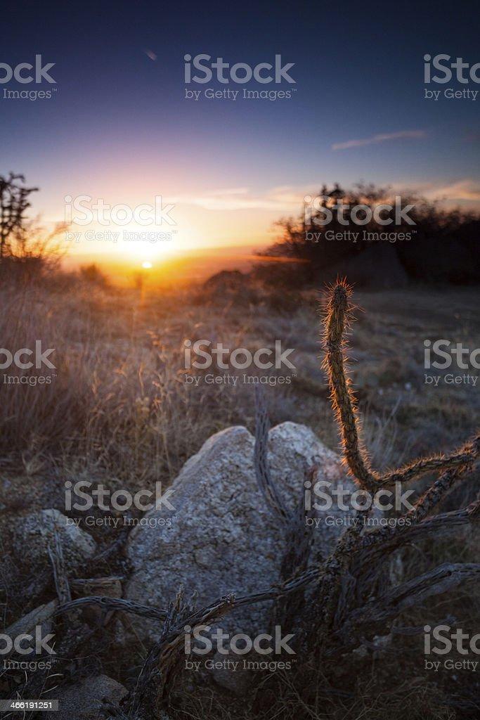 sunshine southwest landscape royalty-free stock photo