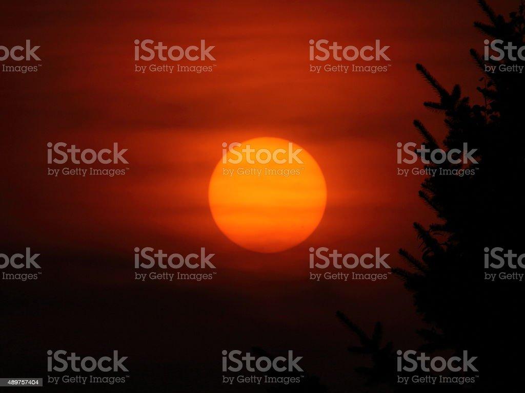 Sunspots stock photo