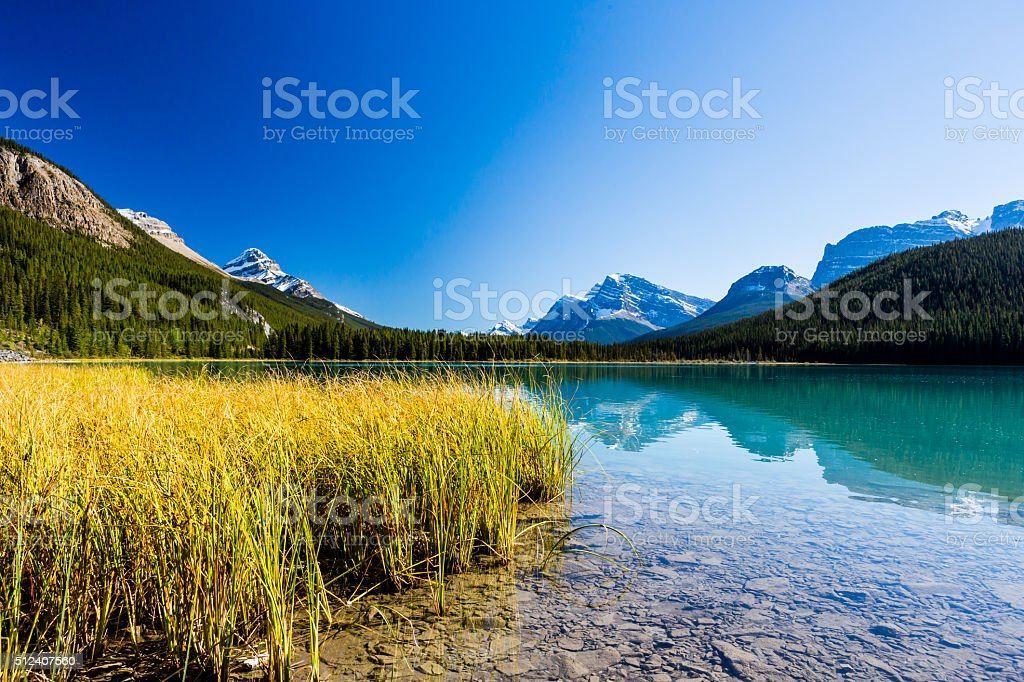 Sunwapta Lake, Jasper National Park in Alberta, Canada stock photo