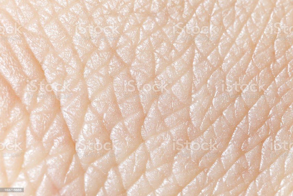 Super macro texture of human skin royalty-free stock photo