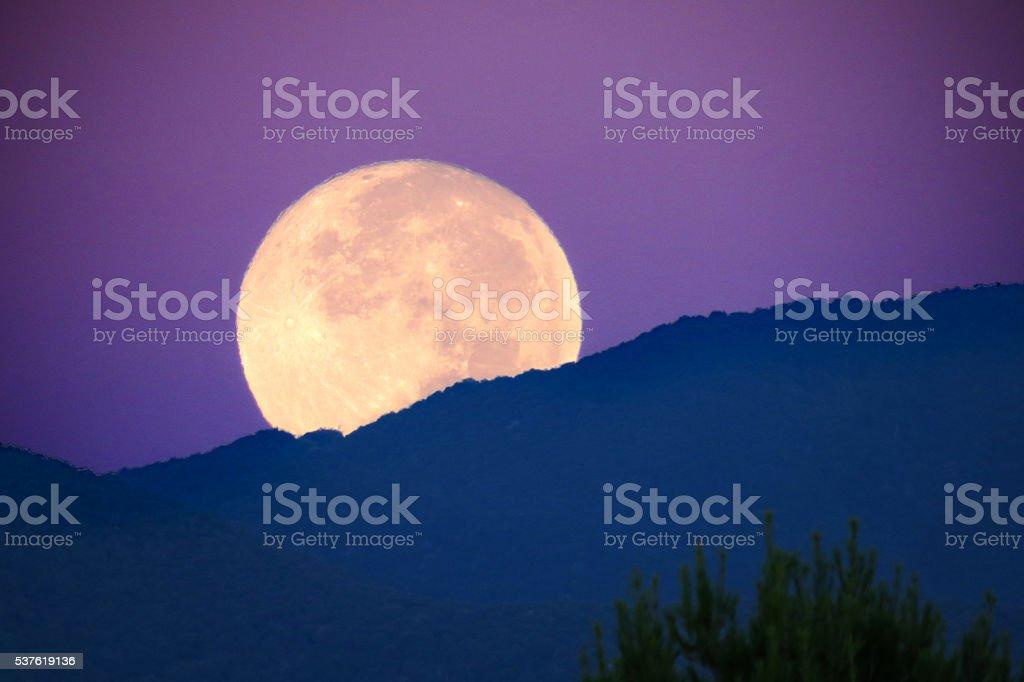 Super Moon at Dawn stock photo