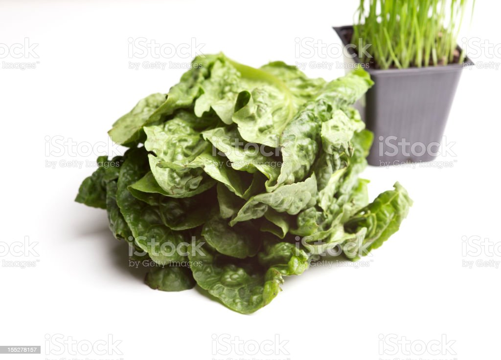 superfood organic natural vegetable greens royalty-free stock photo