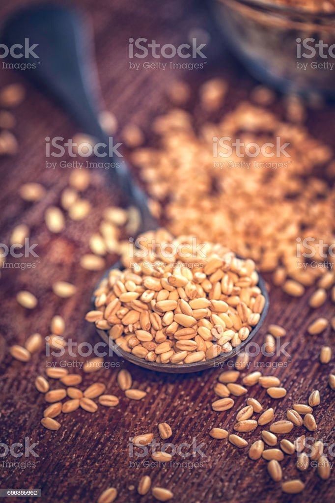 Superfood Wholegrain Wheat on Wooden Background stock photo