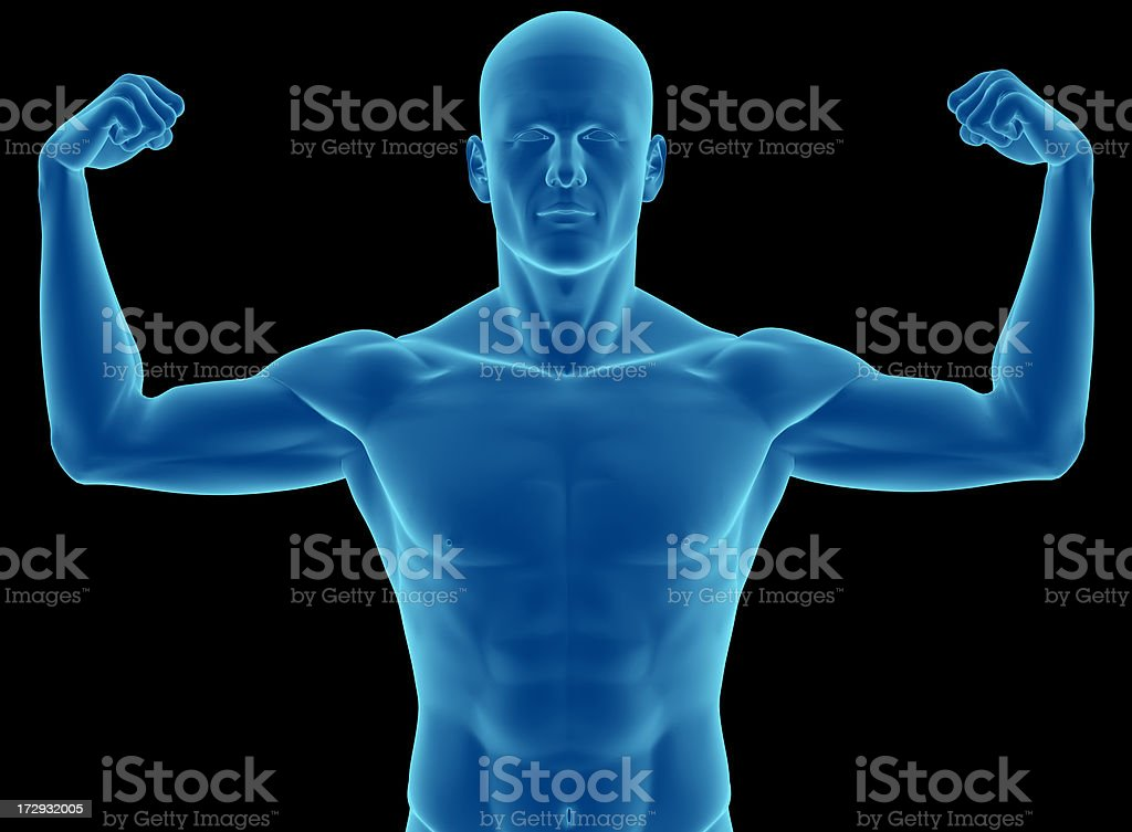 Superior musculature of the human body royalty-free stock photo