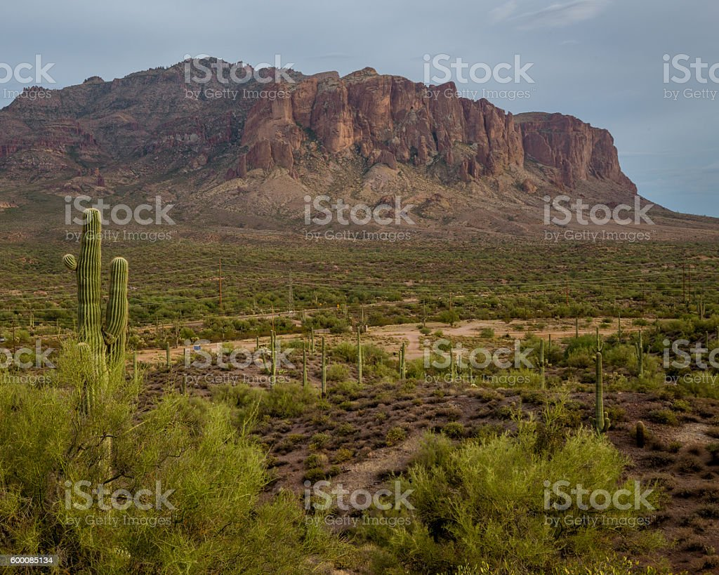 Superstition Mountains Red Rocks Green Desert Saguaro Cactus Trails Sky stock photo