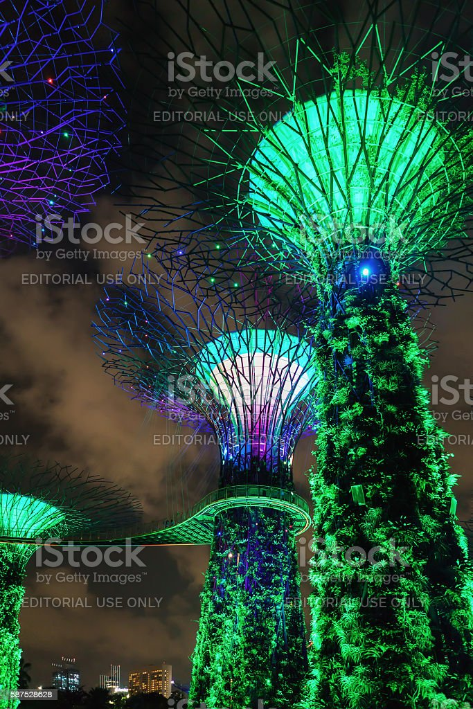 Supertree grove in Gardens by the Bay in Singapore stock photo