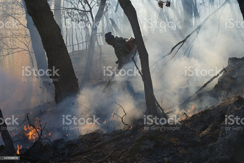 Suppression of Forest Fire royalty-free stock photo