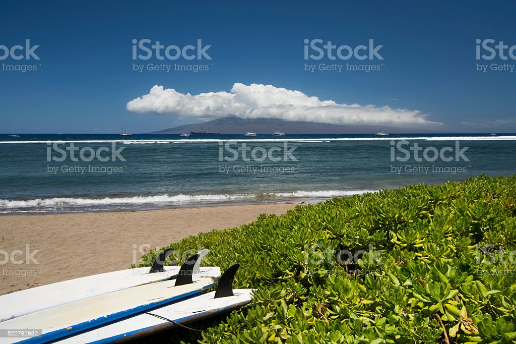 Surf boards lying on beach. Lahaina, Maui, Hawaii stock photo