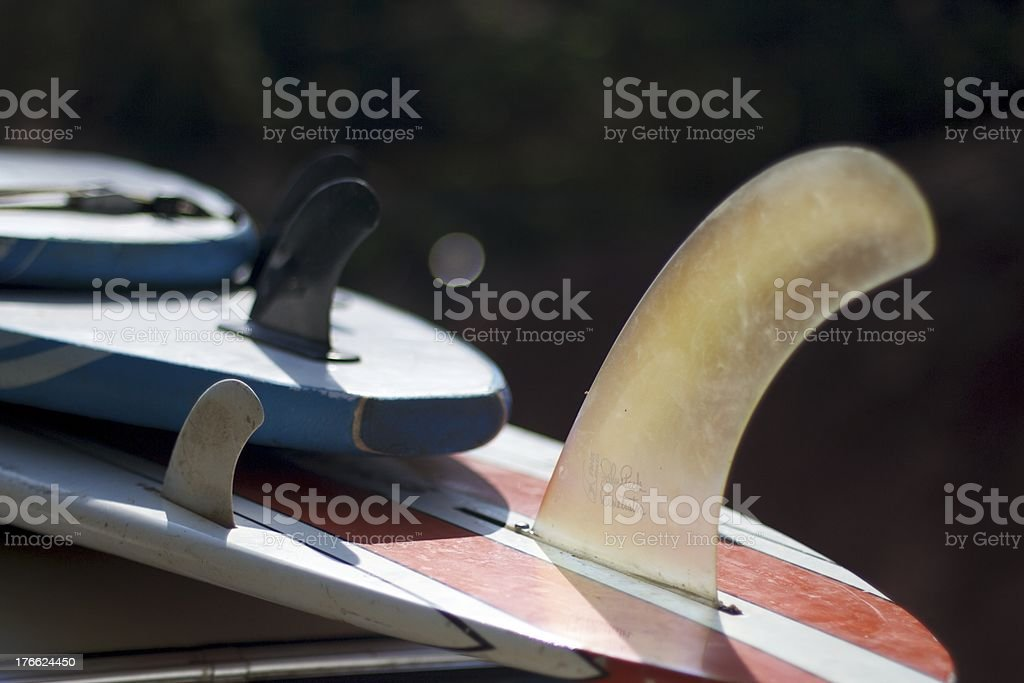 Surf Boards royalty-free stock photo