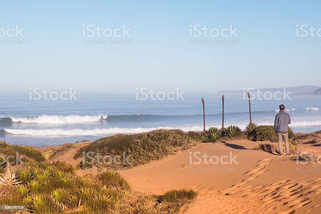surf check stock photo