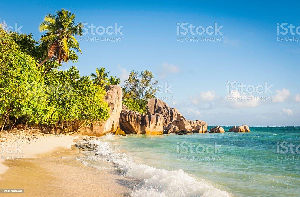 Surf lapping golden beach palm trees idyllic tropical island ocean stock photo