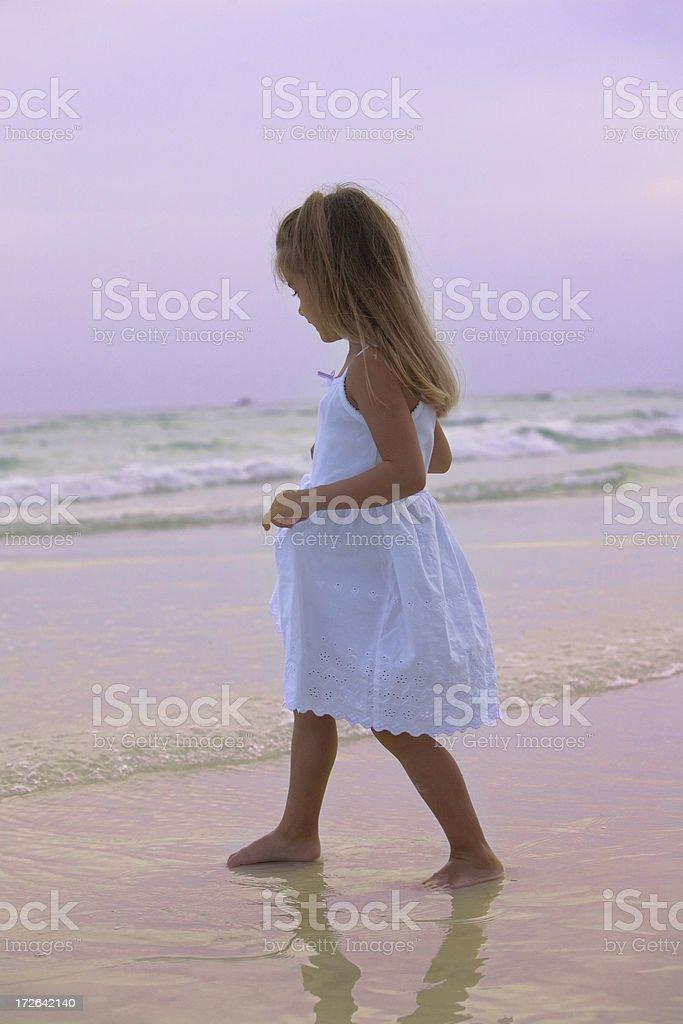 Surf, Sunset, Seaside royalty-free stock photo