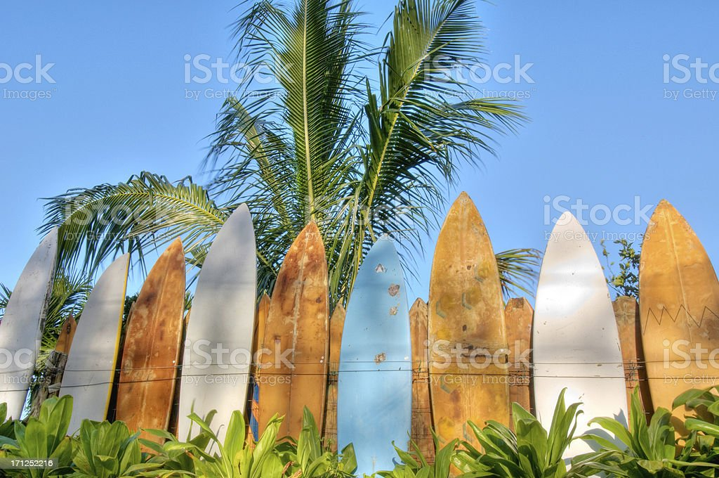Surfboard fence lit by sunrise stock photo