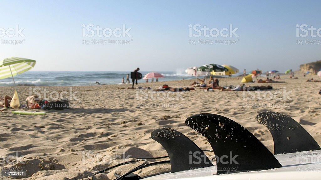 Aletas tabla de surf frente a la playa foto de stock libre de derechos