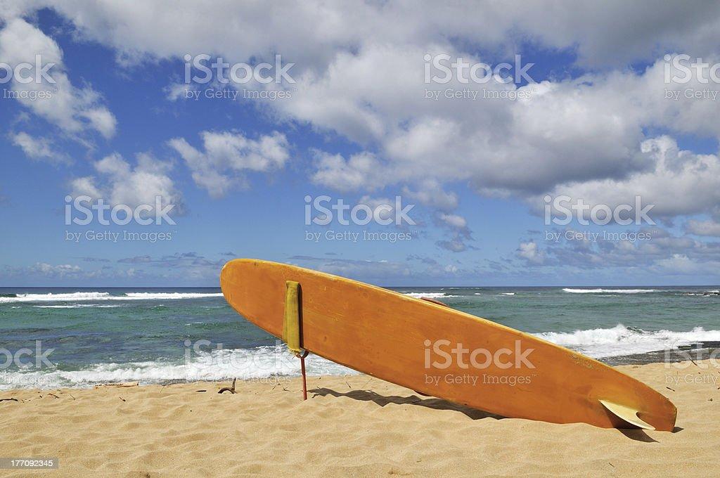 surfboard on Hawaii Beach stock photo