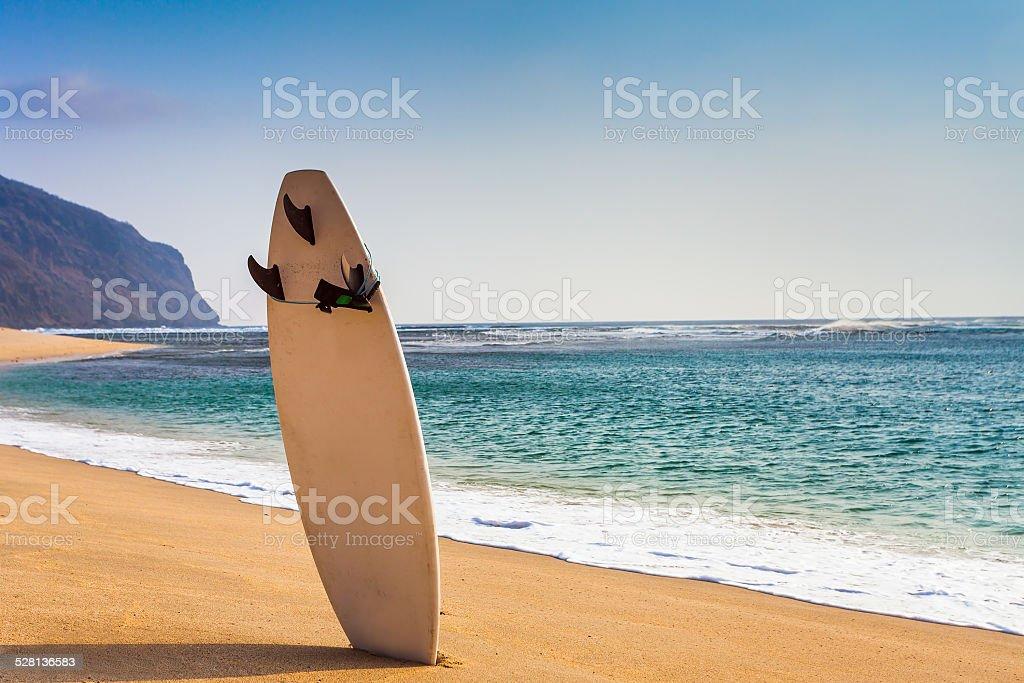 surfboard on the wild beach stock photo