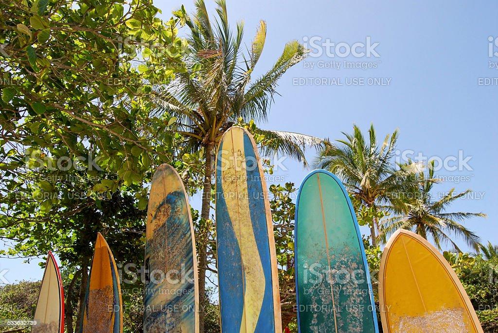 Surfboards at Praia Lopes Mendes beach, Ilha Grande Island, Brazil stock photo