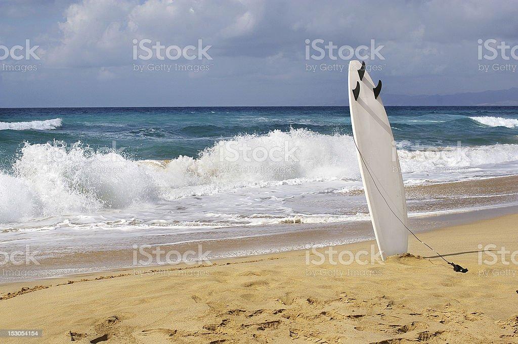 surfboards awaiting fun in the sun stock photo