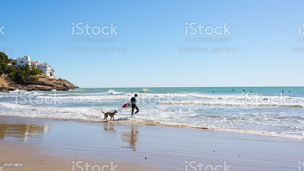 Surfer followed by dog entering in the sea stock photo