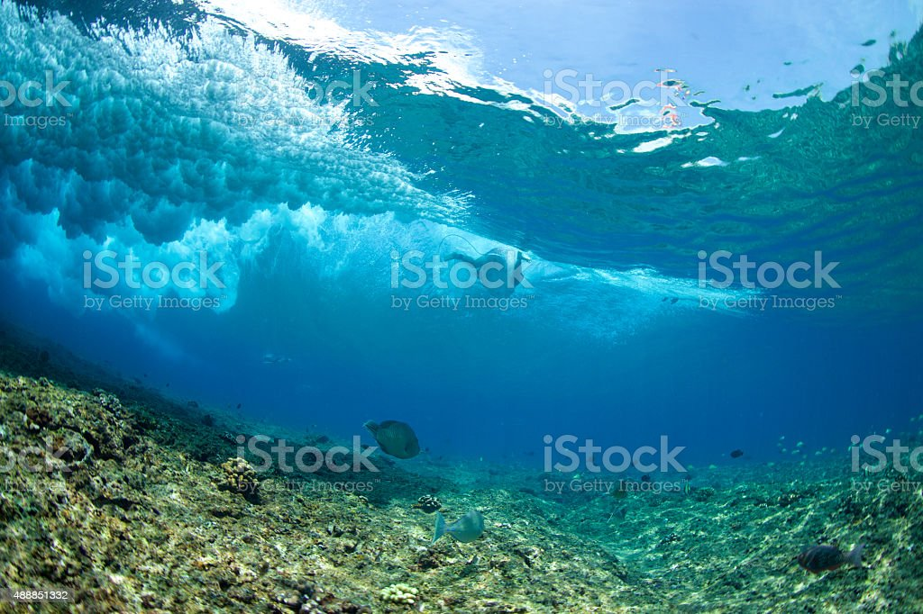 Surfer from under the wave with a fish stock photo