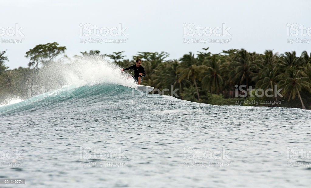 Surfer on a wave and tropical palm tree island stock photo