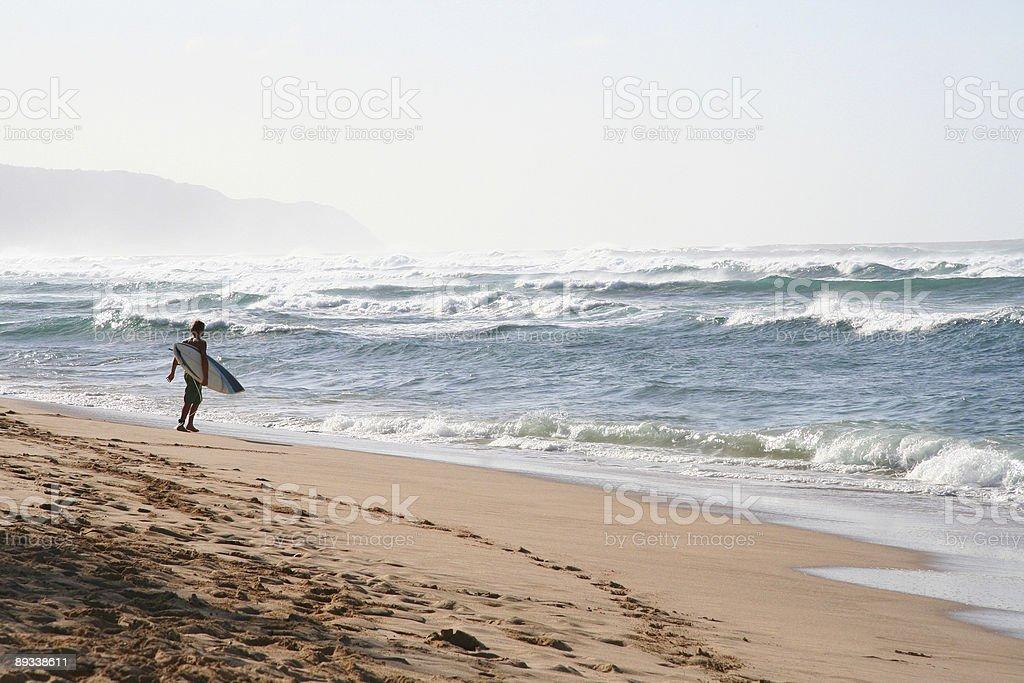 Surfista en la playa foto de stock libre de derechos