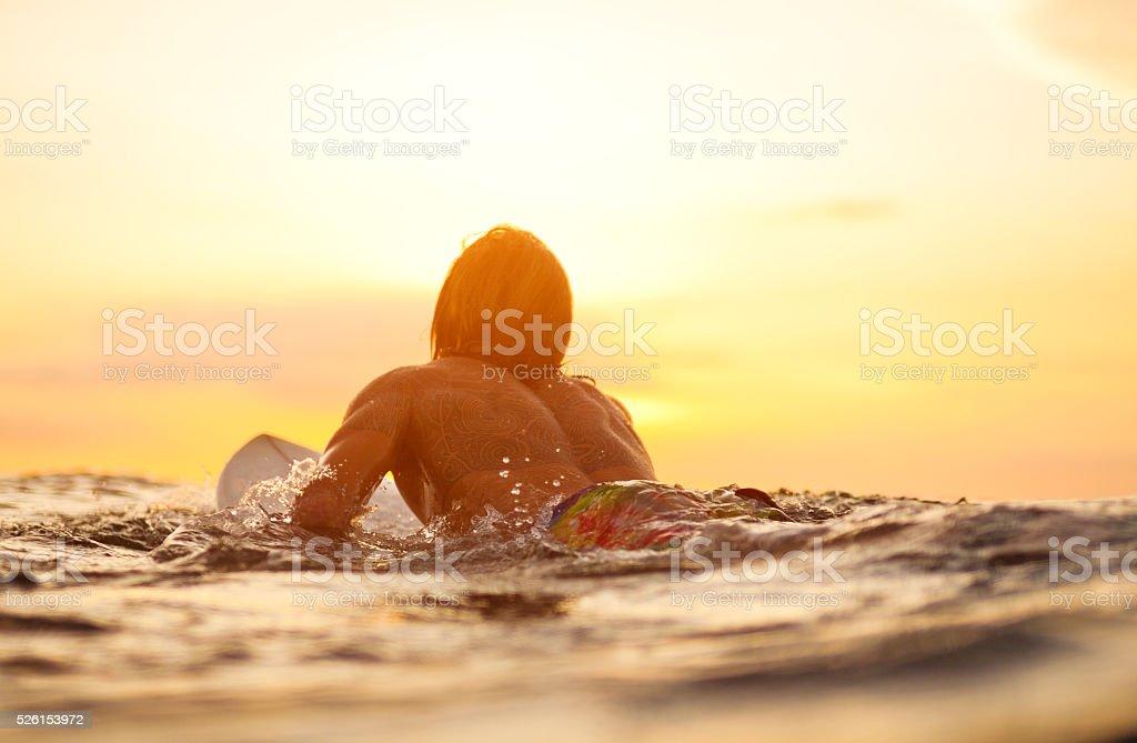 surfer stock photo