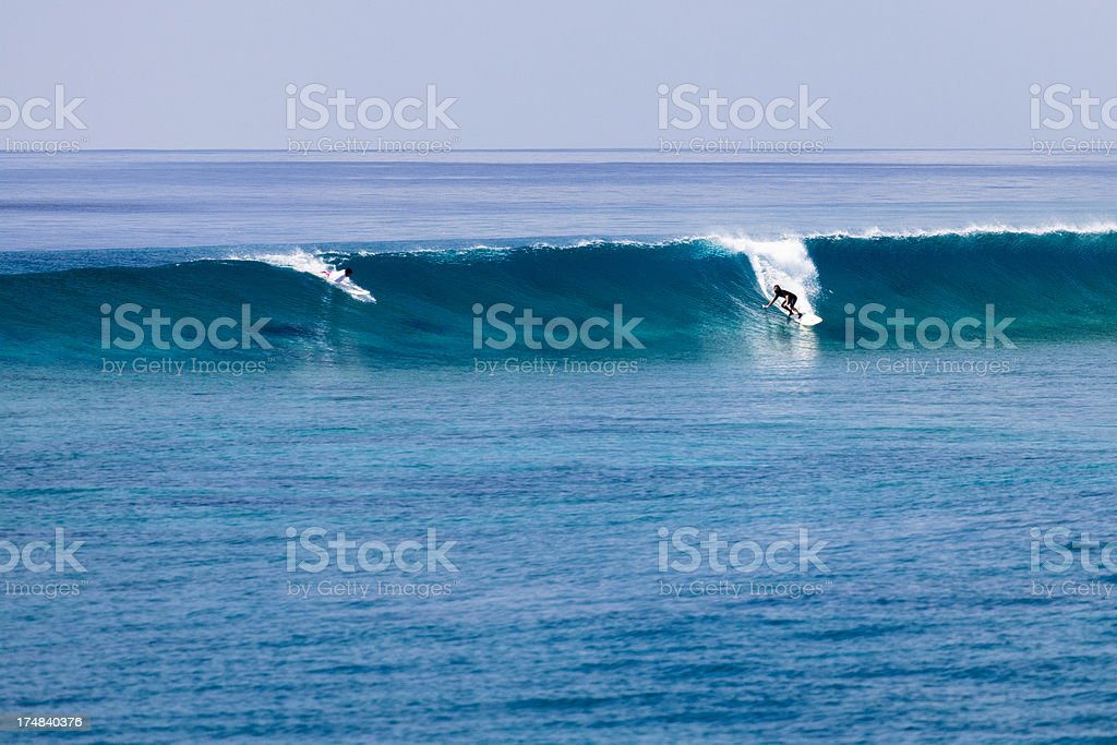 Surfer surfing a wave royalty-free stock photo