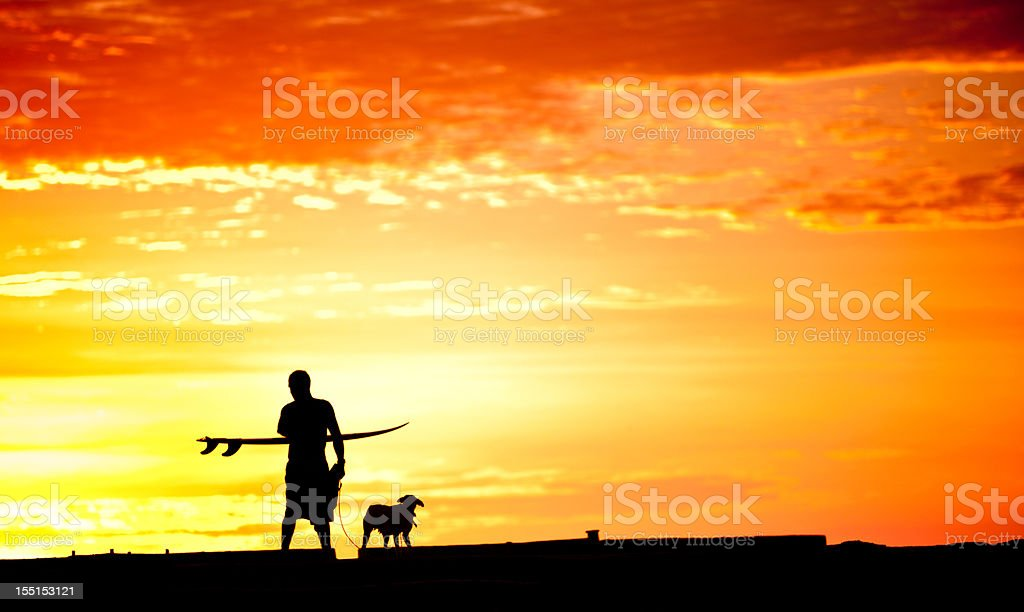 Surfer walking with his board and dog stock photo