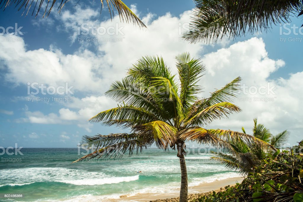 Surfer's Beach in Aguadilla stock photo