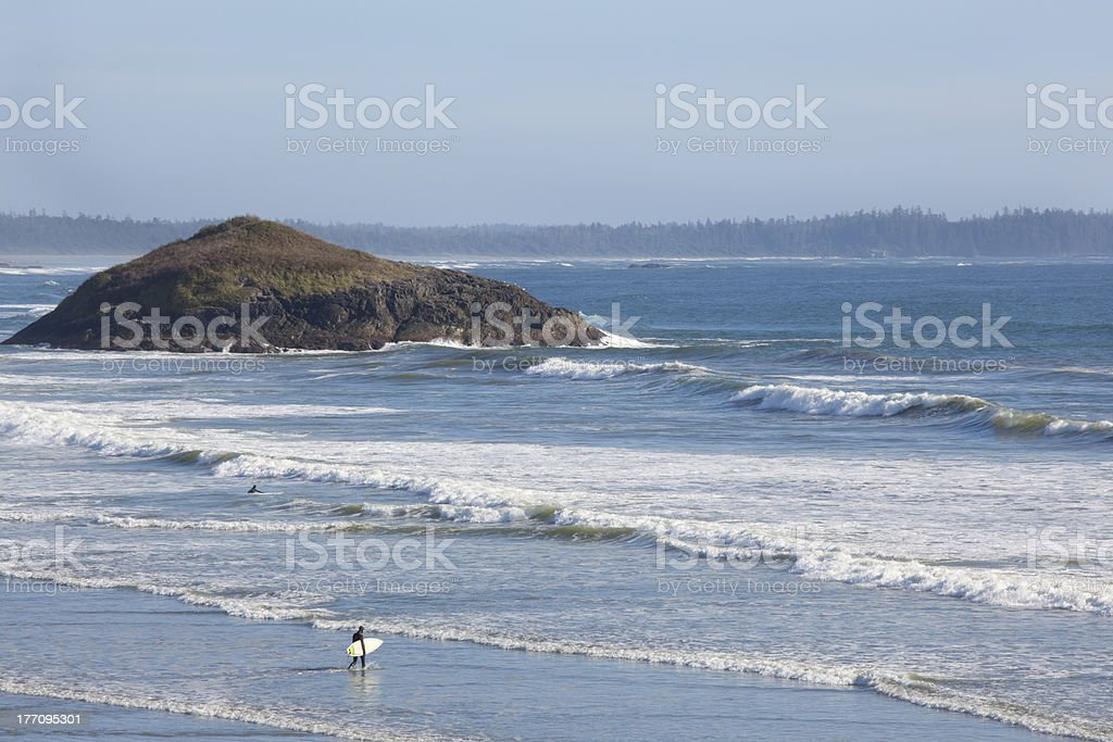 Surfers, Long Beach, Pacific Rim National Park, Tofino stock photo
