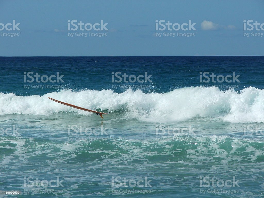 surfer.what surfer? royalty-free stock photo