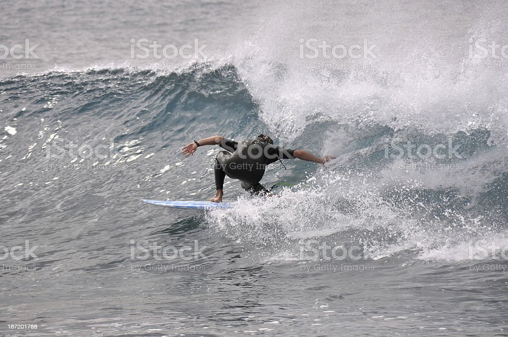 Surfing at Fuerteventura royalty-free stock photo