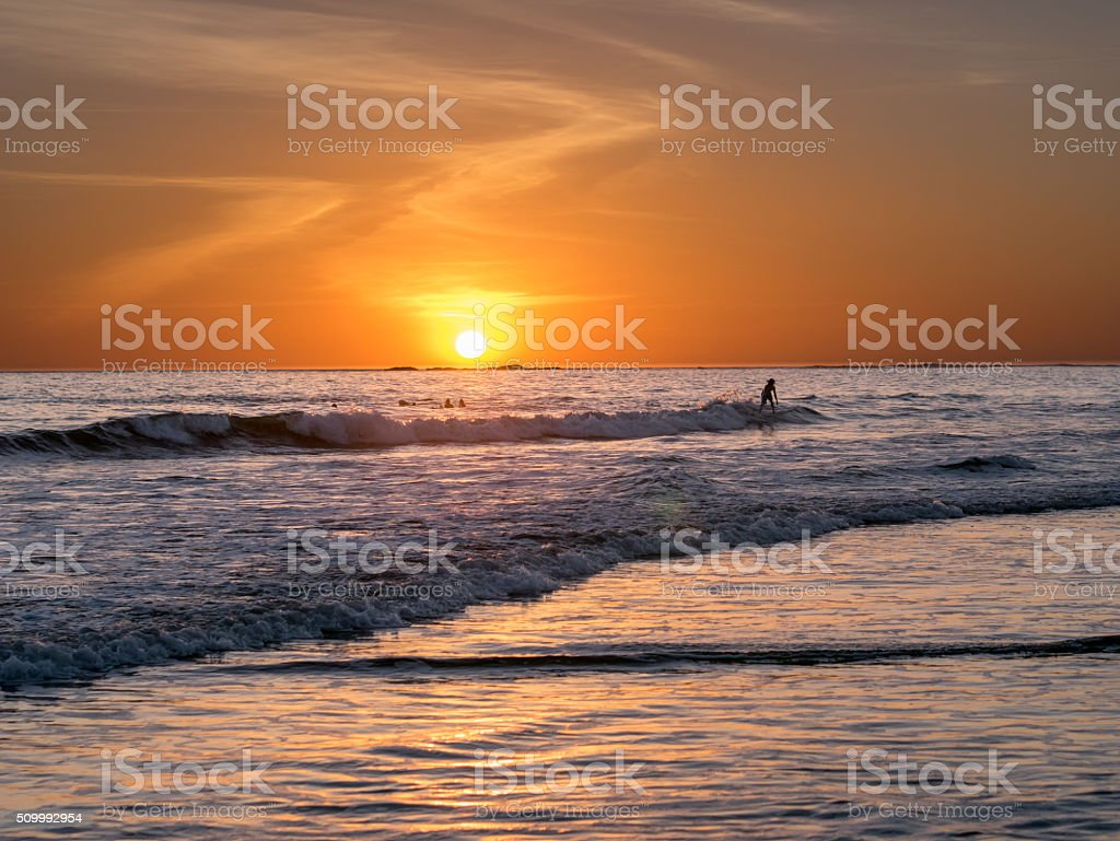 Surfing at Sunset royalty-free stock photo