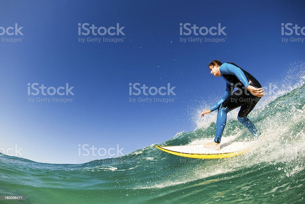 Surfing Fun stock photo
