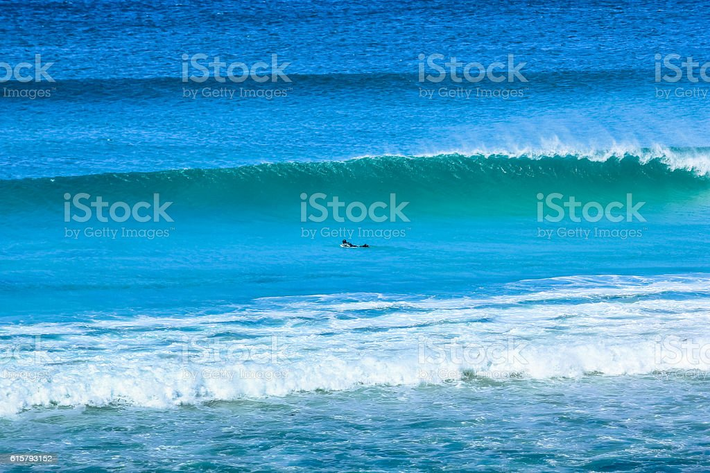 Surfing in Cape Town stock photo