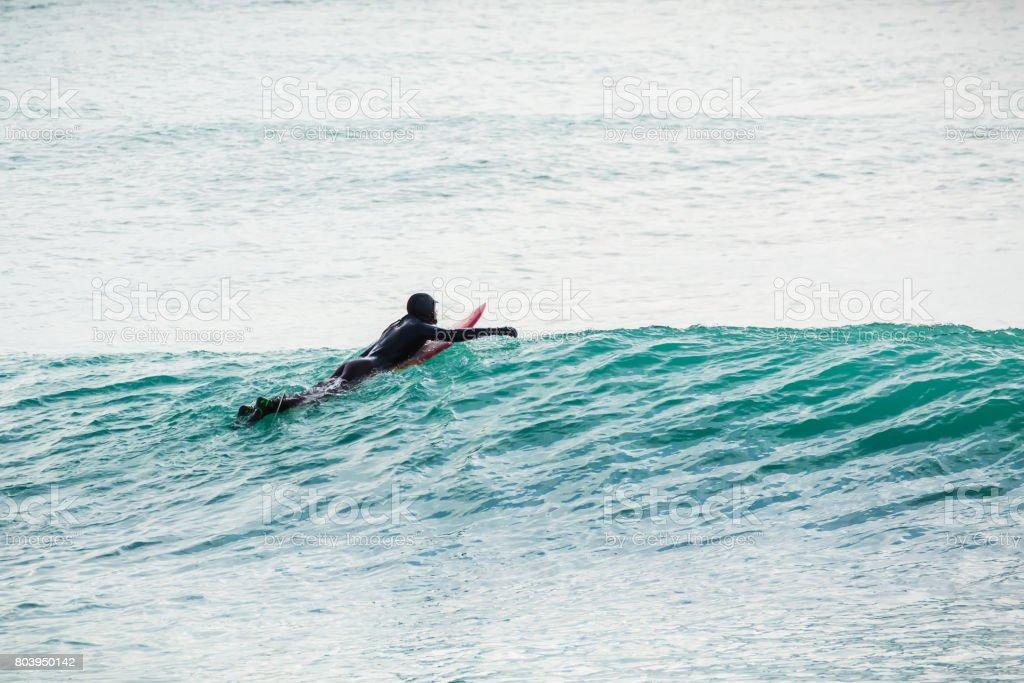 Surfing in ocean stock photo