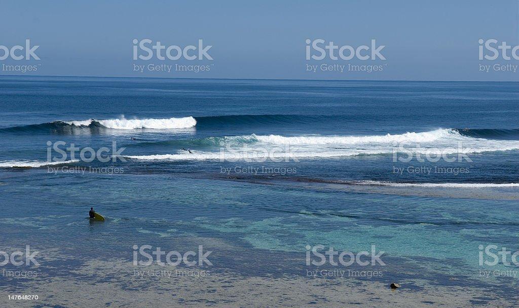 surfing in western austraila stock photo
