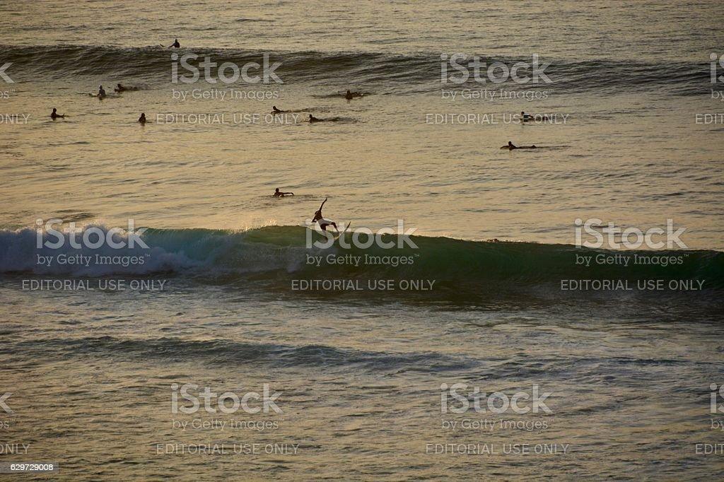 surfing stock photo