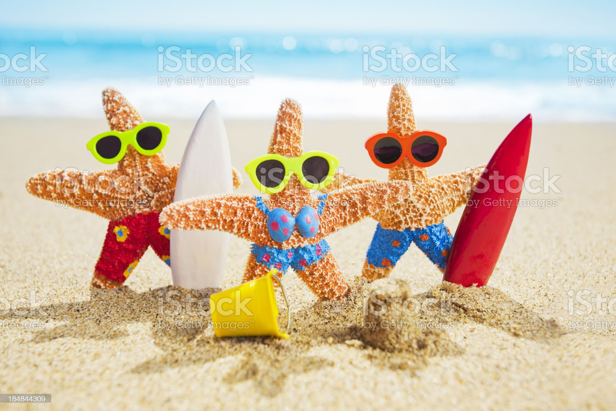 Surfing Star Fish royalty-free stock photo