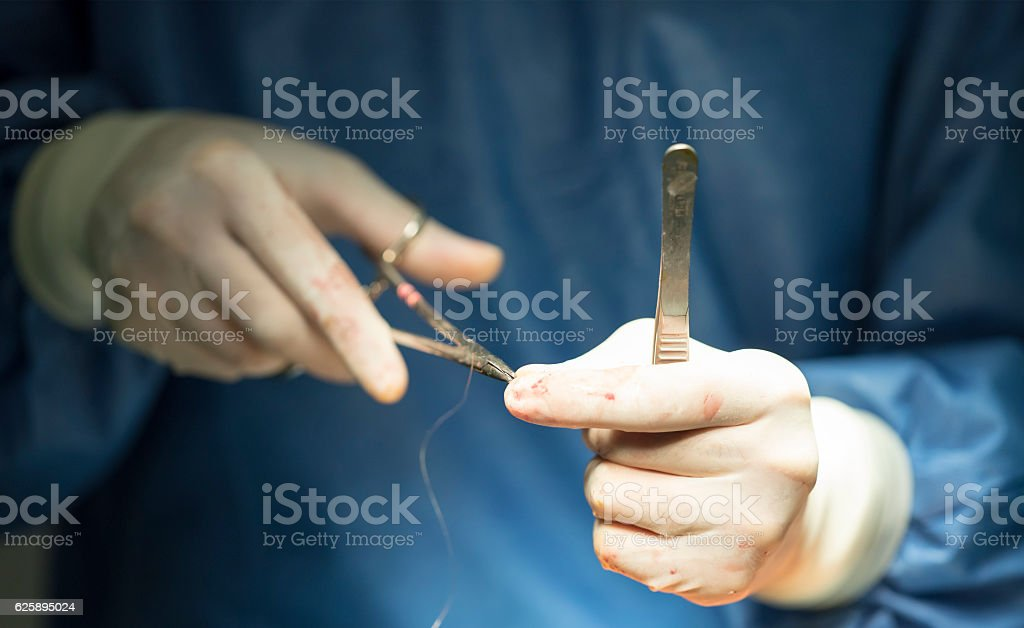 Surgeon holding a needle and thread stock photo