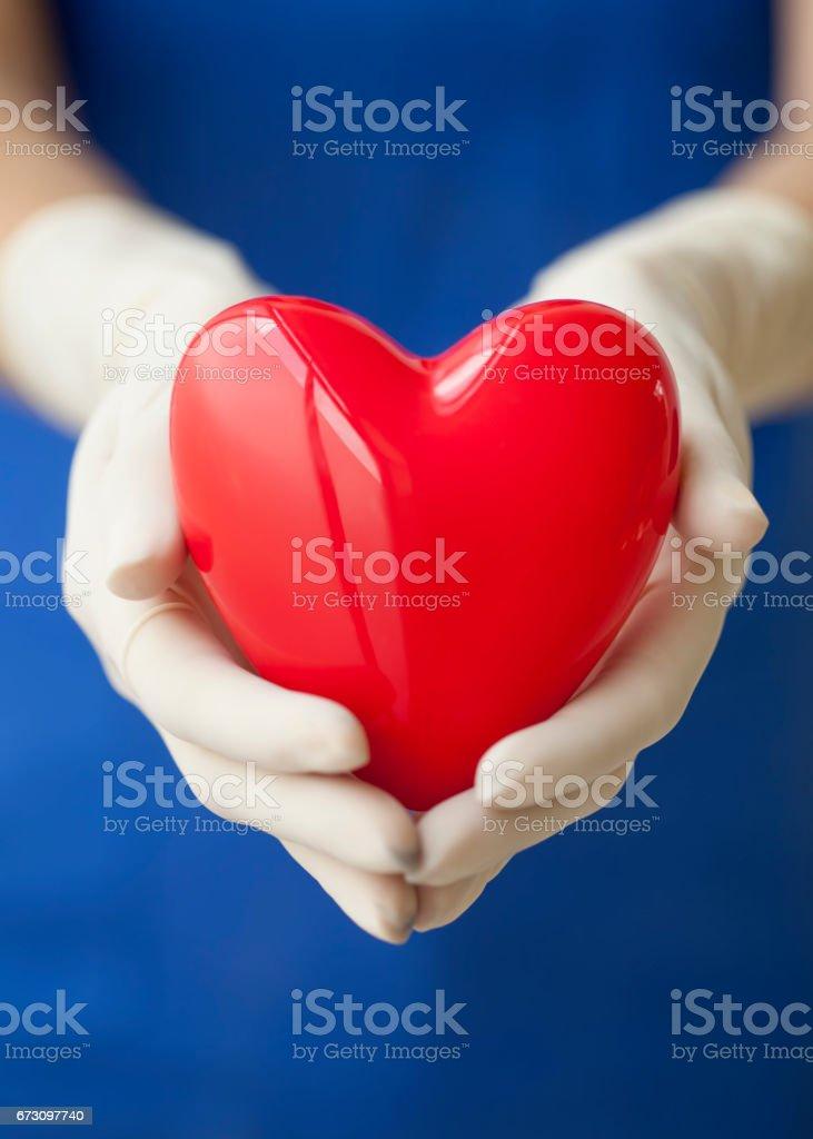 surgeon holding heart shape stock photo