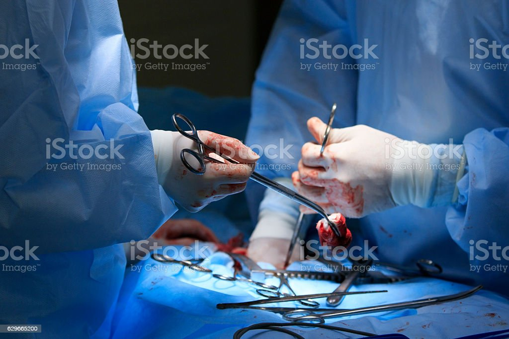 Surgeon Holds Clamp With Blood stock photo