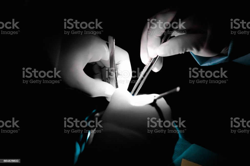 Surgery Hands stock photo