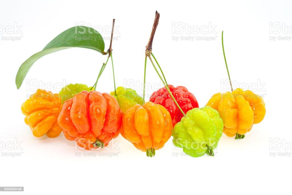 surinam cherry stock photo